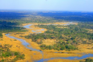 Okavango Delta in the dry season