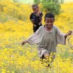 Namaqualand in Ethiopia