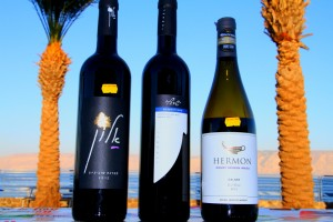 Israeli wines in the Galilee